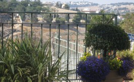 renovated house for rent in abu tor