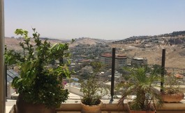 Amazing apt for rent in abu tor