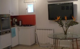 Stunning apt for rent in oved st